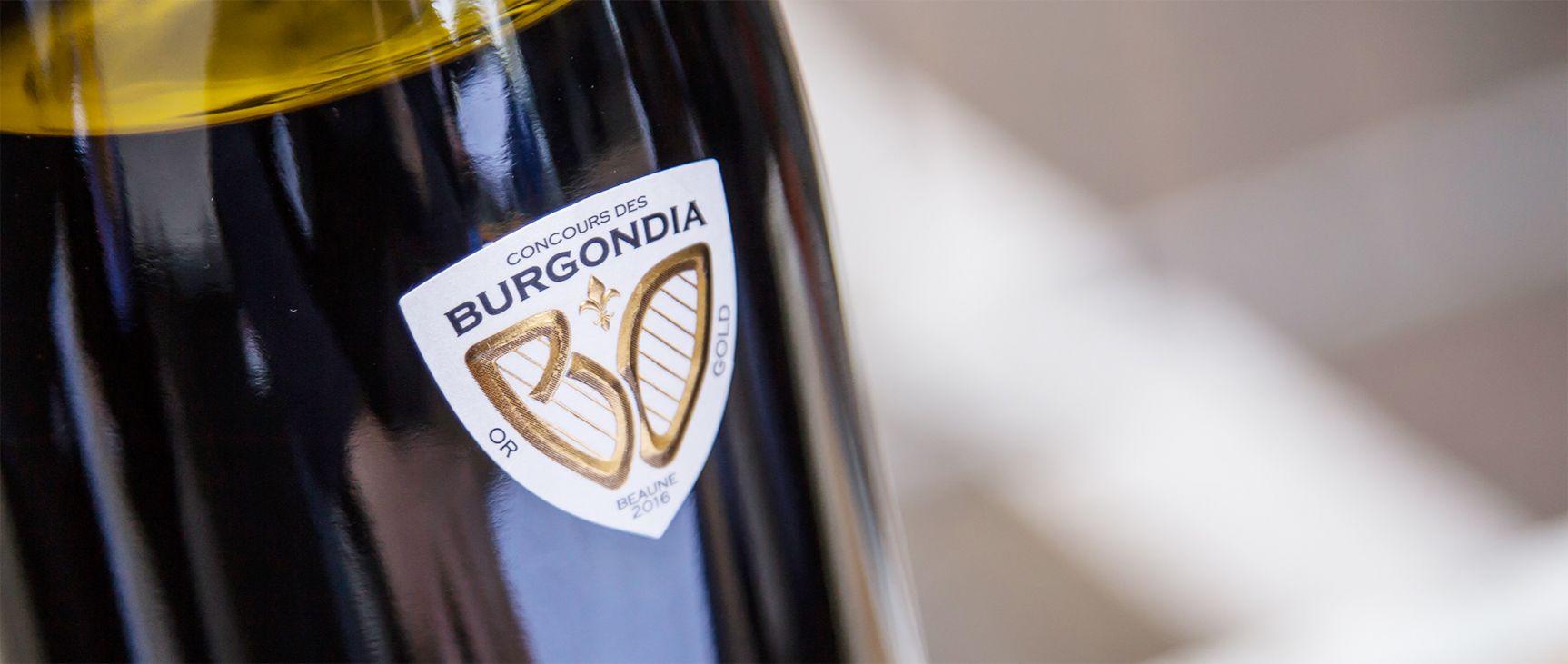 Burgondia Logo identité visuelle simulation